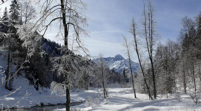 Wanderungen im Nordschwarzwald bei Baiersbronn
