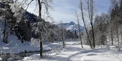 Wanderportal Geschichte zu Fuß. Thema Baiersbronn und Nordschwarzwald