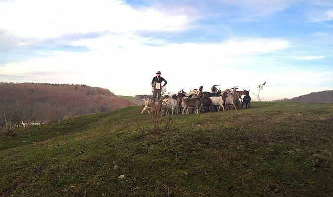 Wanderung vom Blautal, Herrlingen, ins Kleine Lautertal