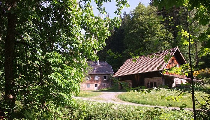 Rohnbachtal / Schwarzwald - ©W. Wirtz/geschichte-zu-fuss.de