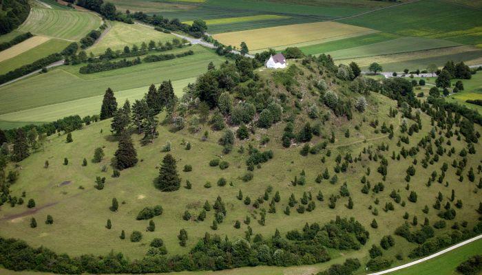 Kornbühl mit Salmendinger Kapelle