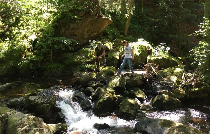 Wanderung von Hinterzarten in die Ravennschlucht - kostenlose Wanderkarte bei www.geschichte-zu-fuss.de