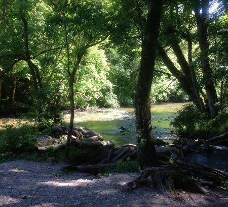 Wanderung Wutachschlucht im Schwarzwald bei Löffingen im Hochschwarzwald