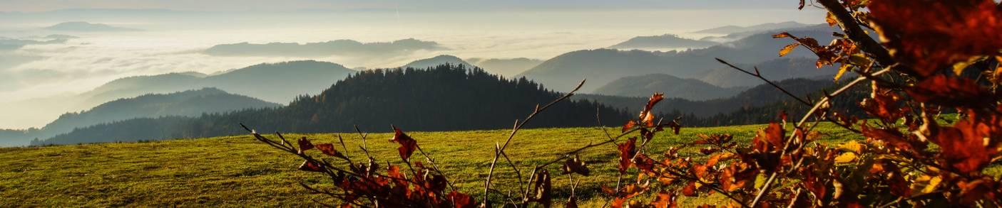 Wanderungen, Wanderwege und Wanderkarten in Baden-Württemberg